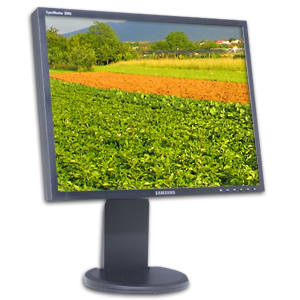 "20"" LCD computer monitor rental 20 inch"
